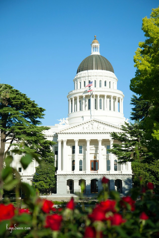 Roses-and-the-Capital-of-Sacramento-CA-via-Kaye-Swain-real-estate-agent-in-Placer-and-Sacramento-County-CA