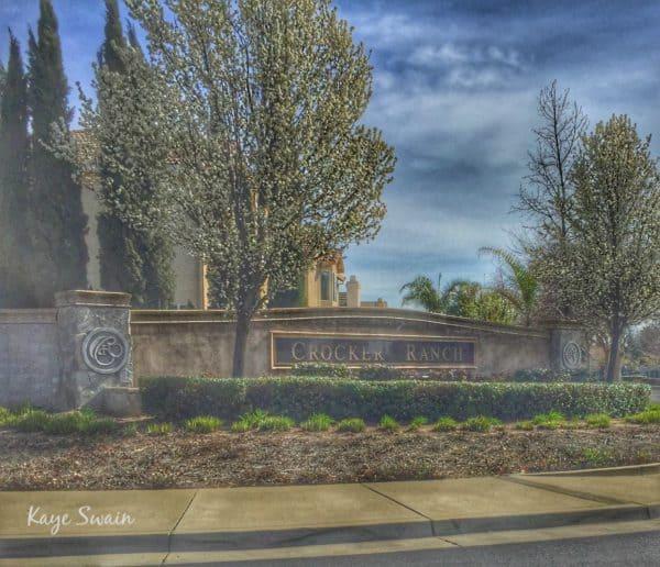 Kaye Swain Roseville REALTOR sharing Crocker Ranch area near yard sale in Blue Oaks Neighborhood