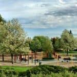 Kaye Swain Roseville Real Estate Agent sharing market trends Roseville lifestyle