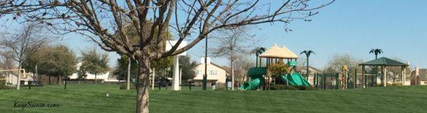 Mel Hamel Park Blue Oaks Neigbhorhood via Roseville REALTOR Kaye Swain