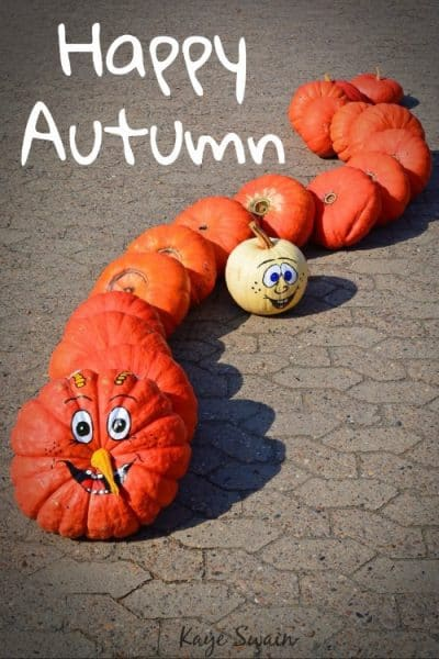 Happy Autumn From Kaye Swain Real Estate Agent Blogger