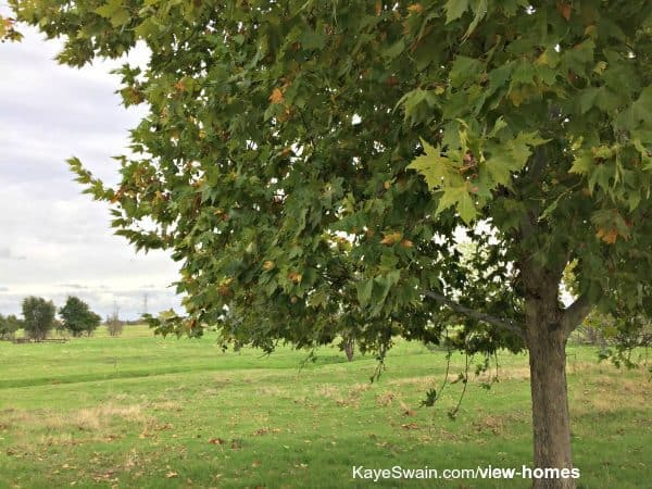Woodcreek Oaks area next to Sun City Roseville has many lovely homes for sale with a view