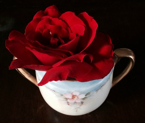 A rich red Roseville California rose in a delicate porcelain tea party sugar pot that was painted by the grandmother of REALTOR Kaye Swain