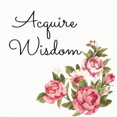 Acquire Wisdom-my goal for myself and my clients whether at my Keller WIlliams office or vacationing in Roseville California or beyond