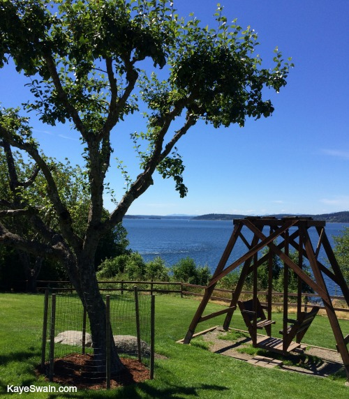 Steilacoom by the Puget Sound with lovely places to sit and enjoy the view in bliss 500
