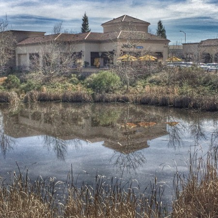 This lovely creek is in the Renaissance Creek Shopping Center near Chipotle and Safeway in East Roseville CA off Douglas and Sierra College-Kaye Swain REALTOR
