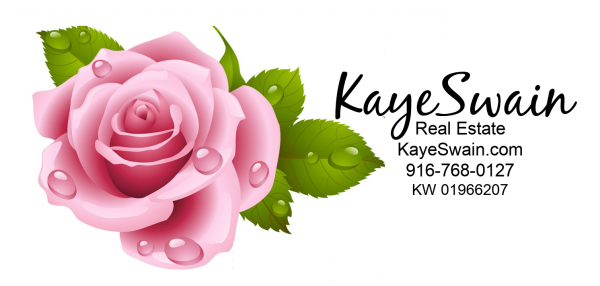 Kaye Swain Roseville REALTOR for all your real estate needs