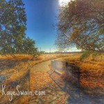 One of the many lovely trails in Roseville CA via real estate agent blogger Kaye Swain using Snapseed HDR