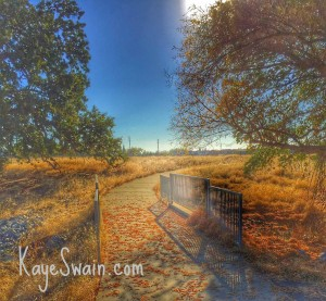 One of the many lovely trails in Roseville CA in the Sacramento area via real estate agent blogger Kaye Swain using Snapseed HDR