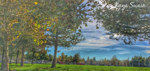 Elliott Park Woodcreek Oaks Neighborhood photo Kaye Swain Roseville Real Estate Agent
