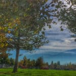 Elliott Park Woodcreek Oaks Photo Kaye Swain Roseville Real Estate Agent
