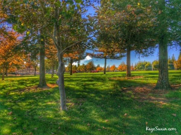 Roseville Real Estate Agent Kaye Swain sharing homes sold West Roseville Woodcreek Oaks