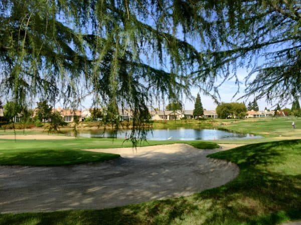 Timber Creek Golf course homes in Sun City Roseville by Kaye Swain Real Estate Agent