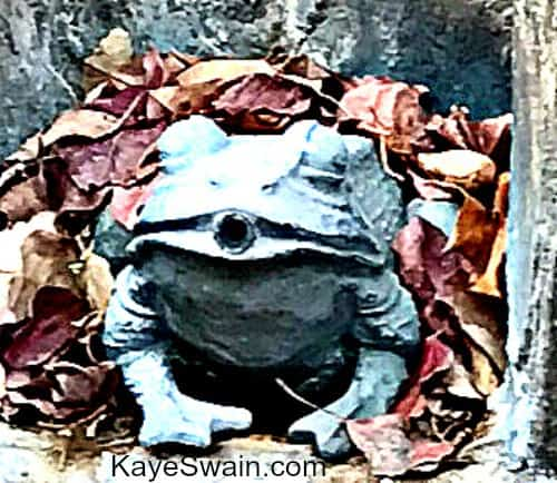 Cute frog on top of fountain at one of Sun City Roseville homes for sale