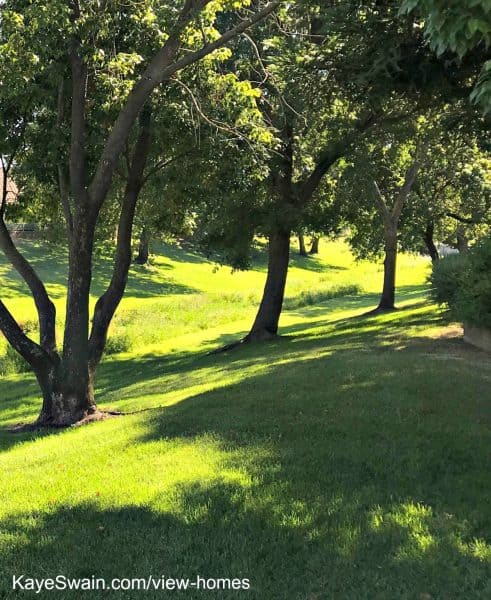 Sun City Roseville homes for sale with a view include open spaces like this