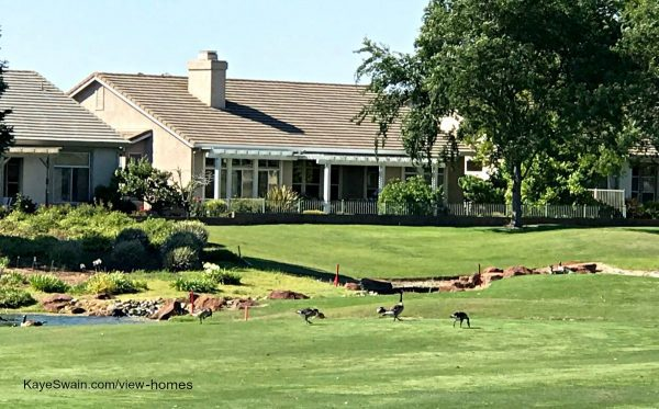 Sun City Roseville homes for sale with view can include golf course and cute critters