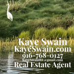 Contact info with delightful heron egret for Kaye Swain Sun City Roseville CA real estate agent