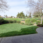Virtual Open House Tours Sun City Open House Regent Gorgeous Back Yard Sun City Roseville golf course views 5