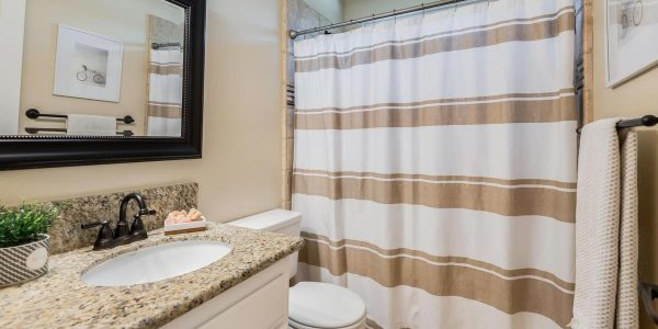 Kaye Swain REALTOR sharing lovely bathroom decor in Rocklin CA House for sale