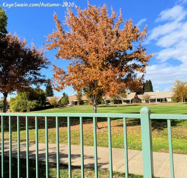Kaye Swain sharing lovely autumn 2020 view from one of golf courses houses for sale in Sun City Roseville CA