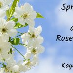 Spring flowers and February 2021 Roseville real estate market are POPPING big time