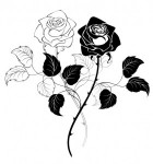 Kaye-Swain-Christian-REALTOR-in-Roseville-CA-loves-roses-edited