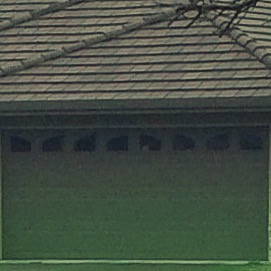 Tandem garages are like getting the fun prize in the Cracker Jacks box-via Roseville CA real estate agent Kaye Swain